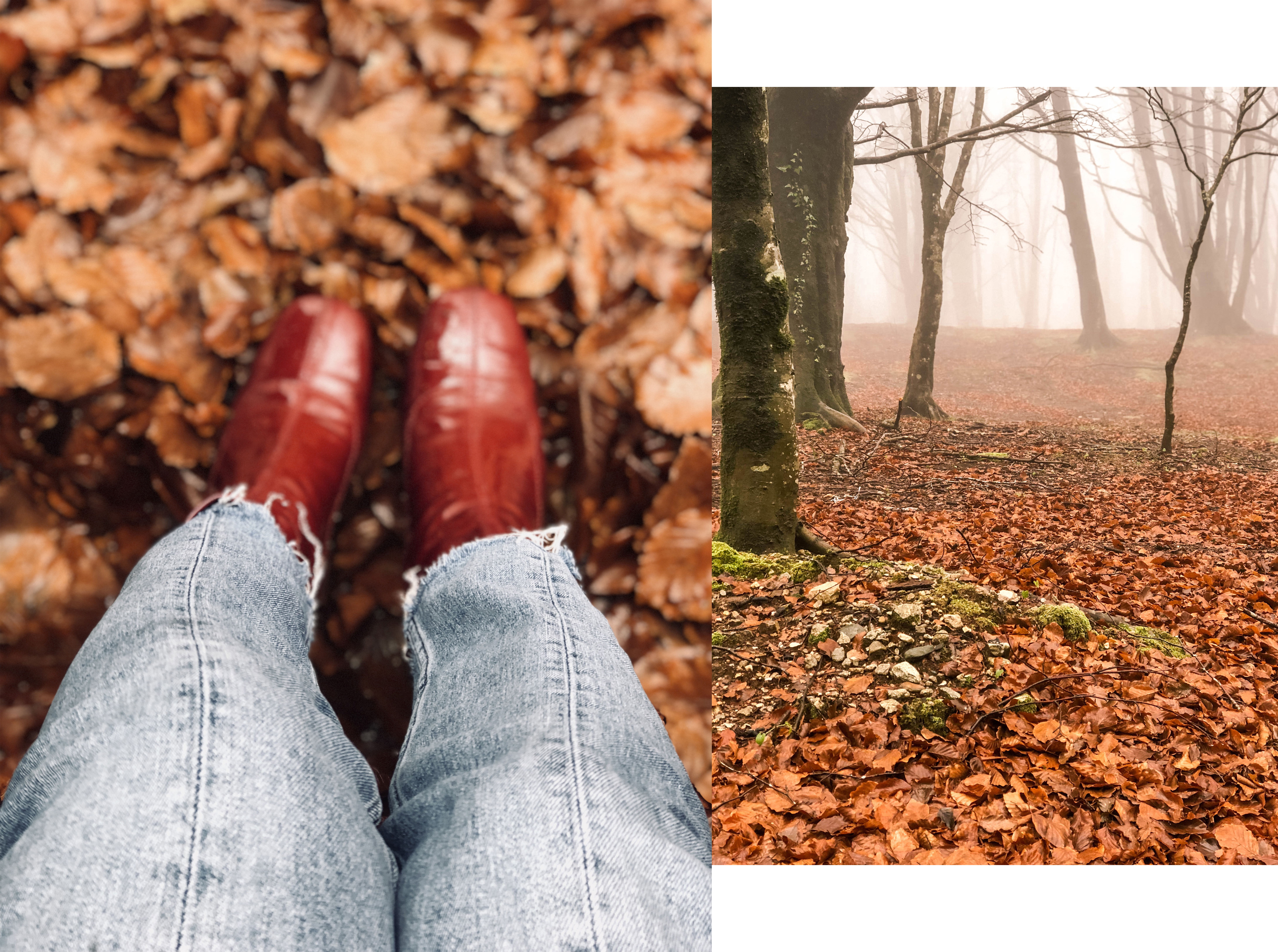 leaves and red boots